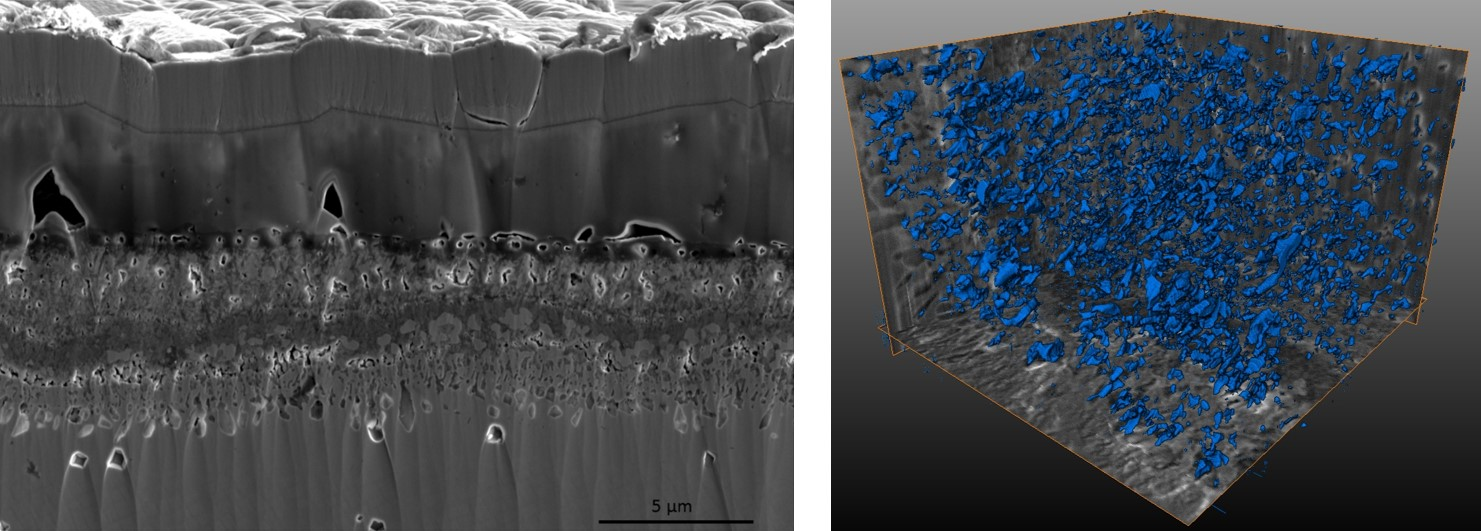 3D characterization of oxide layers in Co-base superalloys, with FIB slice-and-view method