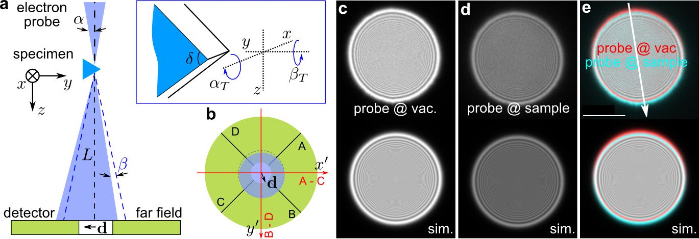 Electron beam deflection by the electrostatic potential of a wedge crystal and subtle beam-specimen interaction